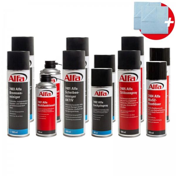 7420 Alfa Reinigungs- und Pflegeset